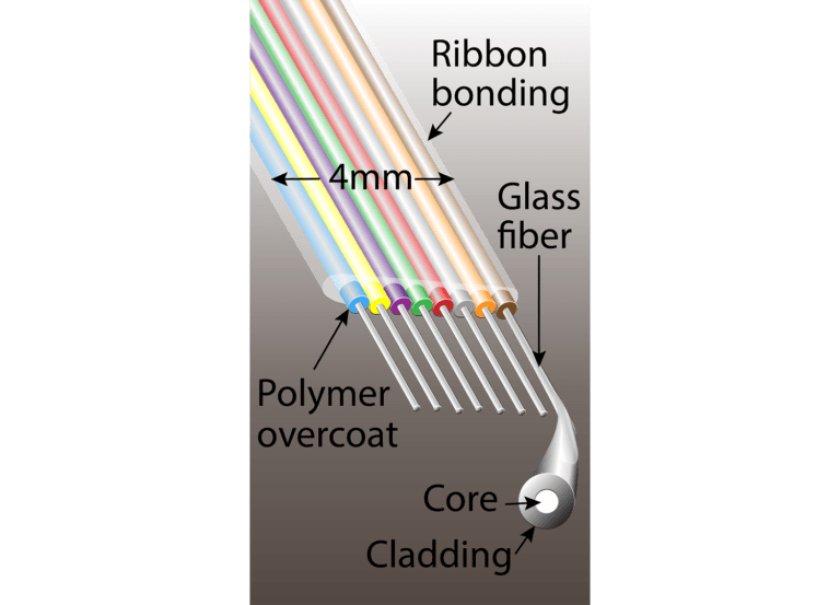 Fiber ribbon. Individual fibers are a little thicker than a human hair.